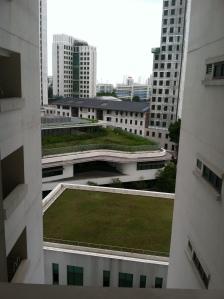 Gran Malaysia pics